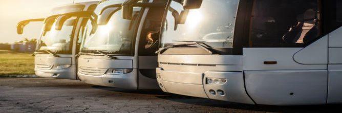 bus-insolite